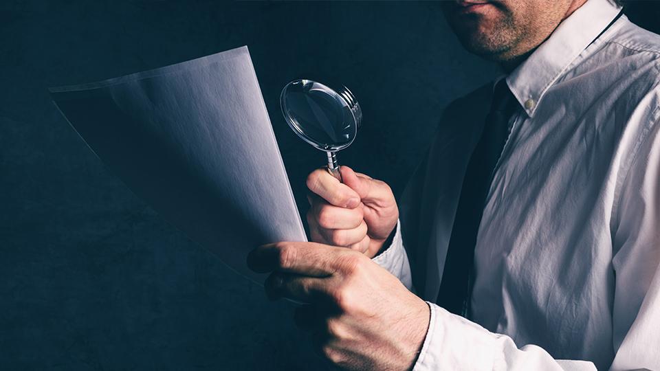 auditor audit