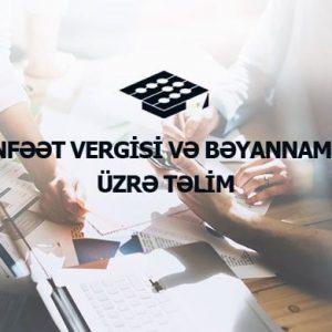 Mənfəət Vergisi Bəyannaməsi